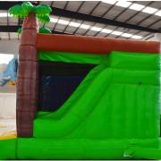 SafariSlide2